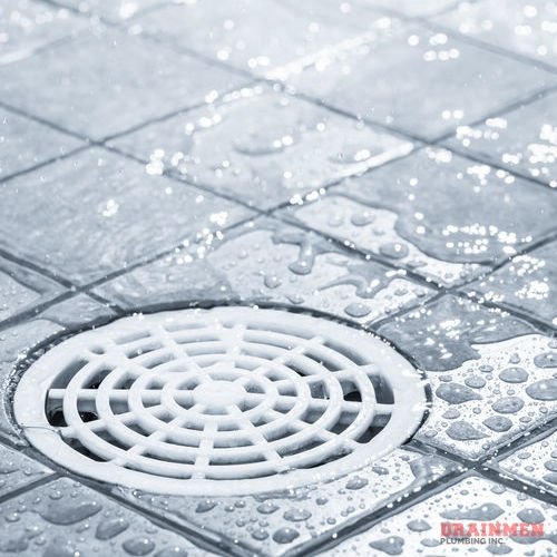 For shower drain cleaning services, contact us today.